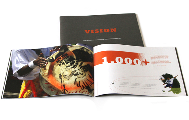 Vision Annual Report